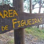 Area_de_Figueiras_Islas_Cies