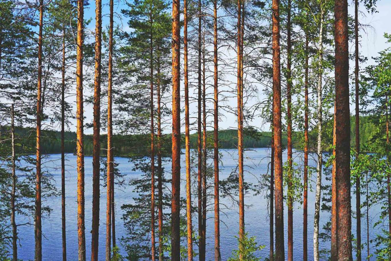 lake-finlandia-viaggiamondo-zeppelin