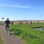 bici-e-barca-in-olanda-olanda-natura-ciclabile