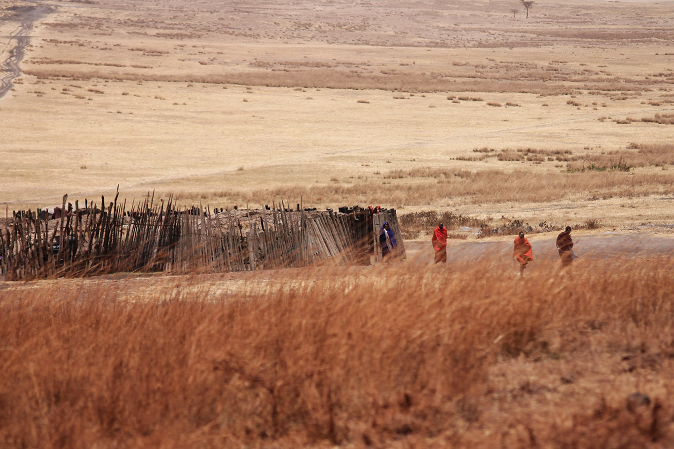 tanzania-popolo-zeppelin-viaggiamondo