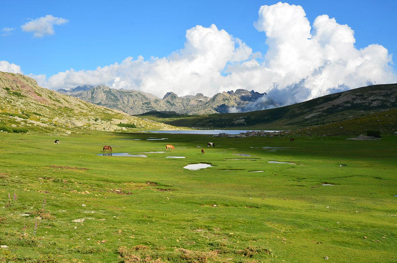 Lago di Nino