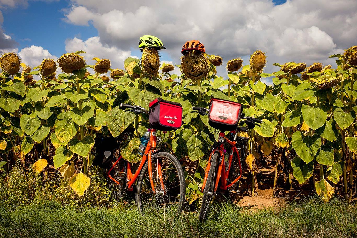 Castelli della Loira in bici e famiglia