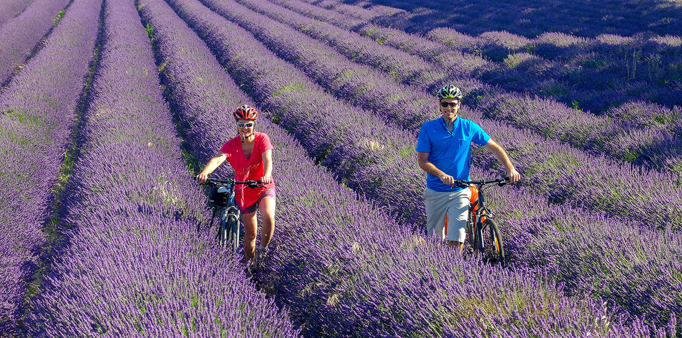 Via Rhona in bici